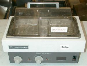 Fisher Scientific Isotemp 2LS 240V Water Bath