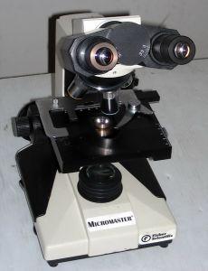 Fisher Scientific Micromaster II 12-561-4B Binocular Microscope