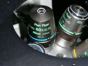 Nikon Eclipse TE300 Inverted, Fluorescence Microscope